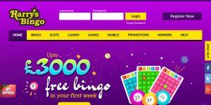 Harrys Bingo Screenshot